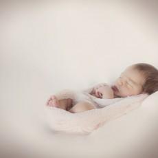 baby photography in Portland Oregon