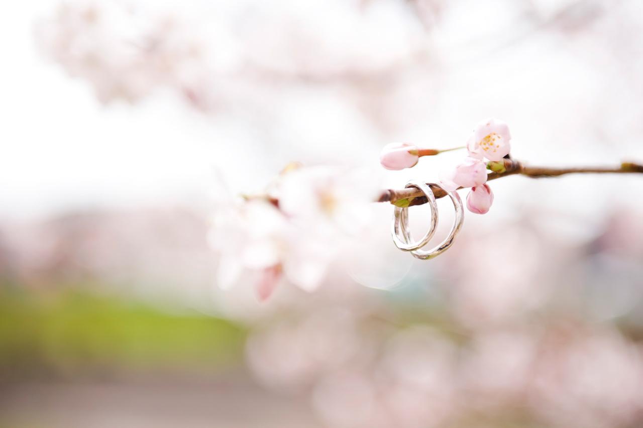 Kimi-Photography-Wedding-Photographer-Portland-Oregon-engagement-picture